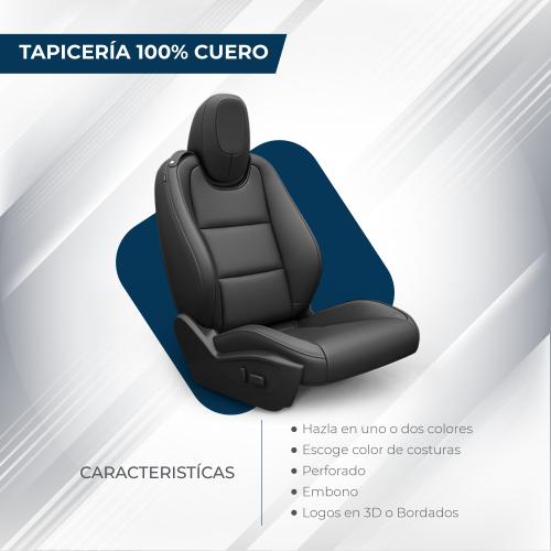ANCOVI_cojineracuero